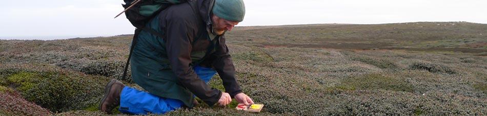 Pest Eradication Subantarctic Islands